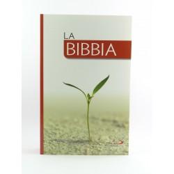 Bibbia San Paolo edizione economica