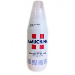 Amuchina Soluzione Disinfettante Concentrata LT 1